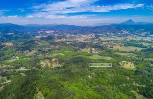 Picture of 6916 Tweed Valley Way, Dunbible NSW 2484
