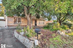 15 Tarraleah Street, Banksia Park SA 5091
