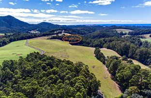 Picture of Lot 1 Allison Road, North Motton TAS 7315