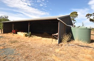 Picture of 1 Midland Highway, Carag Carag VIC 3623