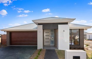 Picture of 52 Hollows Drive, Oran Park NSW 2570