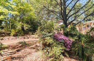 597 Canobolas  Road, Orange NSW 2800