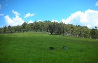 Picture of 483 Tabulam Road, Tabulam NSW 2469