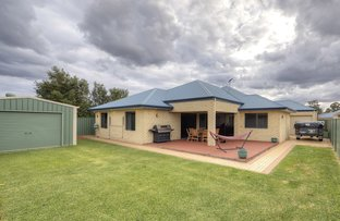 Picture of 48 Excalibur Chase, Wattle Grove WA 6107