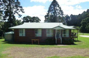 Picture of 7 Firefly drive, Bunya Mountains QLD 4405