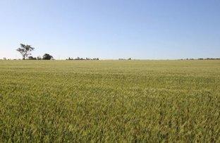 Picture of 172 Yarranlea Road, Yarranlea QLD 4356