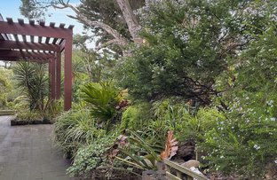 Picture of 419 Melbourne Road, Blairgowrie VIC 3942