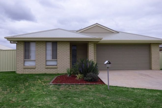 Picture of 42 Madden Drive, GRIFFITH NSW 2680