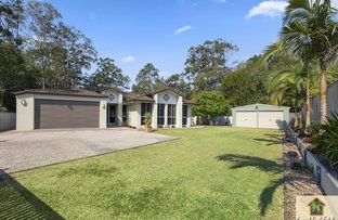 Picture of 14 Treetop Ct, Mooloolah Valley QLD 4553
