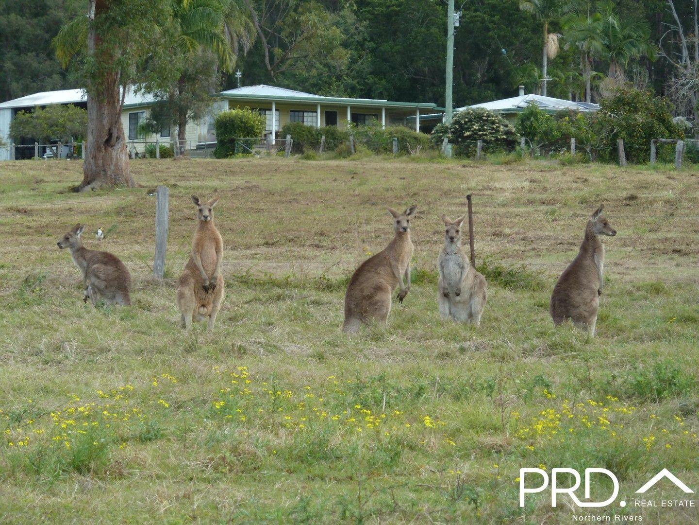 97 Woods Road, Dobies Bight NSW 2470, Image 0