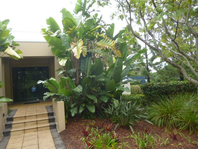 4142/1 Ross Street Royal Pines, Benowa QLD 4217, Image 1