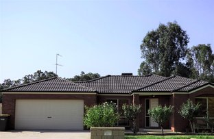 Picture of 17 King Street, Darlington Point NSW 2706