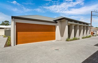Picture of 49 Dudley Ave, North Plympton SA 5037