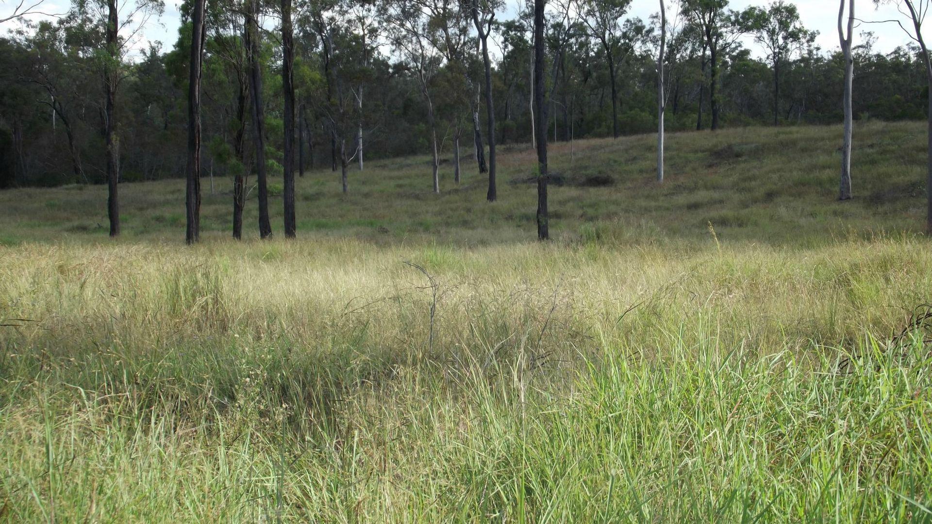 92 Corfield Drive, Booyal QLD 4671, Image 2