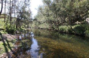 Picture of Lot 15 Water Gulley Rd off Neringla Road Araluen via, Braidwood NSW 2622