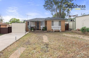 Picture of 26 Randall Avenue, Minto NSW 2566