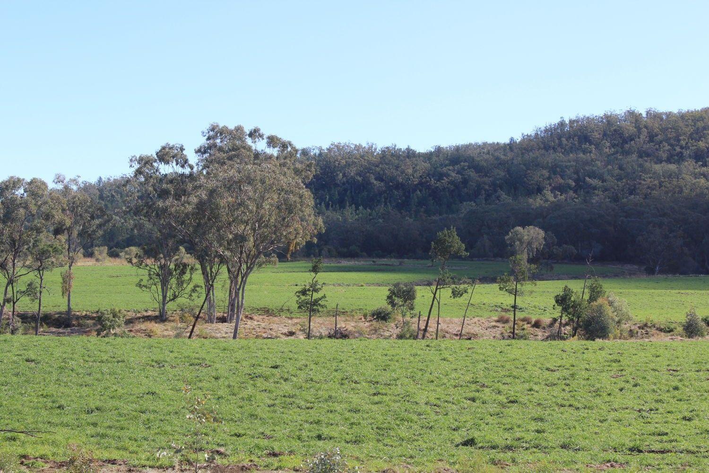 Arcadia, Bellata NSW 2397, Image 1