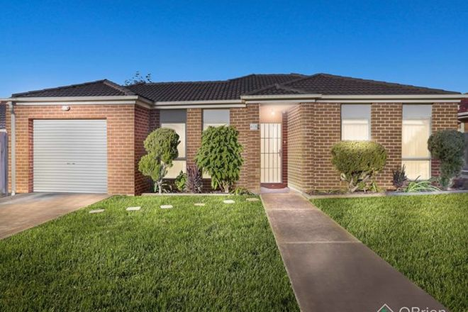 Picture of 1/12 Normanby Street, SYDENHAM VIC 3037