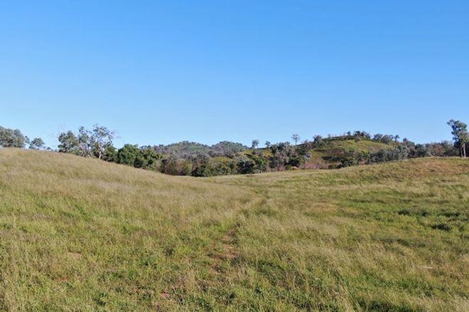 Picture of 2496 Towarra Road, BINGARA NSW 2404