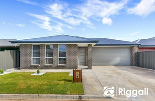 Picture of 41 Sheffield Crescent, Blair Athol SA 5084