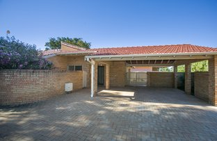 Picture of 36A Wyatt Road, Bayswater WA 6053