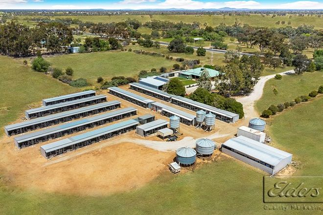 Picture of 5998 Loddon Valley Highway, BEARS LAGOON VIC 3517