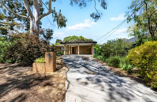 Picture of 9 Walsh St, Vista SA 5091