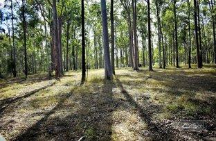 Picture of Lot 185 Van Hensbroek Road, Bauple QLD 4650