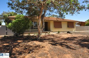 Picture of 17 Kirwan Crescent, Port Augusta West SA 5700