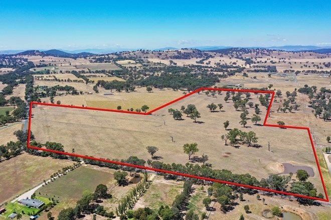 Picture of 344 Molkentin Rd, JINDERA NSW 2642