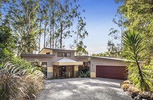 Picture of 14 Native Bird Place, Buderim QLD 4556