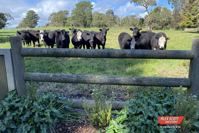 Picture of 40 Arbuthnots Road, TARWIN LOWER VIC 3956