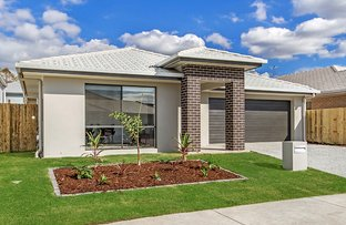 Picture of 7 Comanche Street, Newport QLD 4020