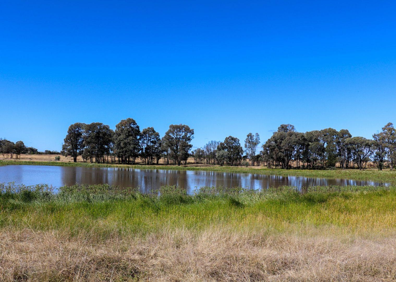 888 Boondandilla Rd, Western Creek QLD 4357, Image 1
