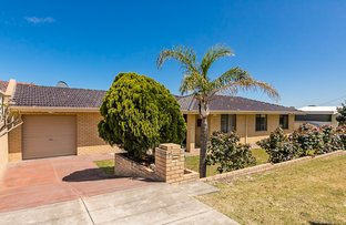 Picture of 7 Orsova Street, Tuart Hill WA 6060