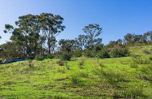 Picture of Lot 1/128 Fryers Road, Chewton VIC 3451