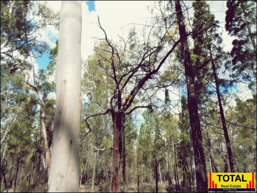 Lot 40 Pine Road, Millmerran Woods QLD 4357, Image 1