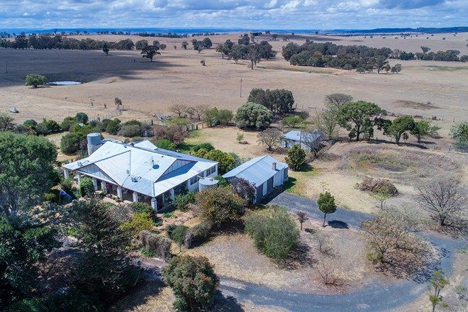 Picture of 2610 Castlereagh Highway, GULGONG NSW 2852