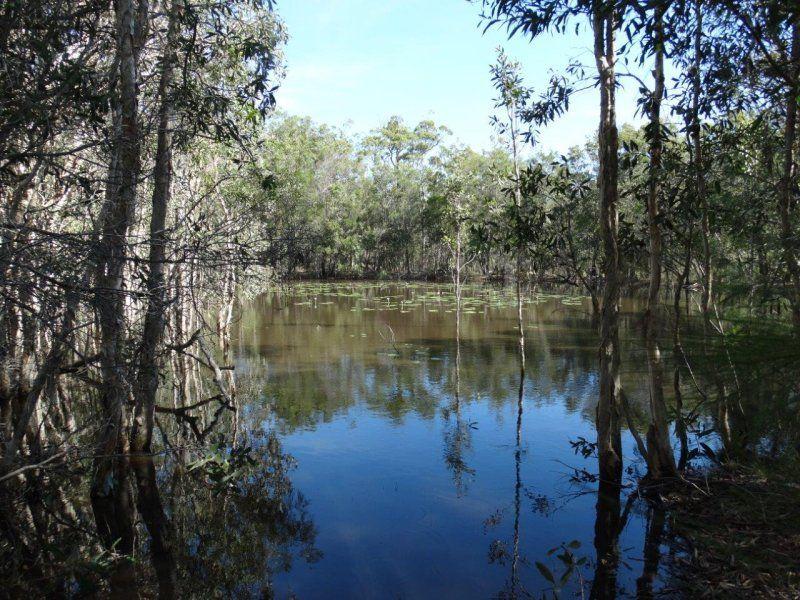 99 Capricornia Drive, Deepwater QLD 4674, Image 2