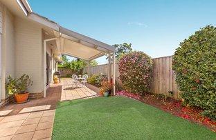 Picture of 11 Leura Crescent, Turramurra NSW 2074