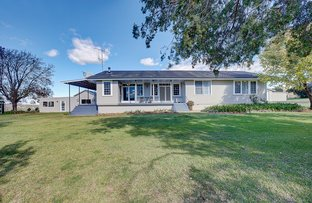 Collie Blue 841 Cassilis Road, Coolah NSW 2843