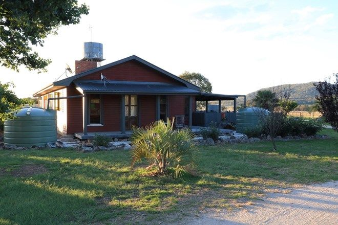 Picture of 305 Washpool Creek Road, TENTERFIELD NSW 2372