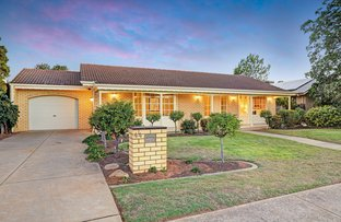 44 Spruce Avenue, Warradale SA 5046