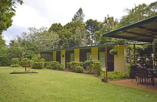 31-35 Witches Chase, Tamborine Mountain QLD 4272