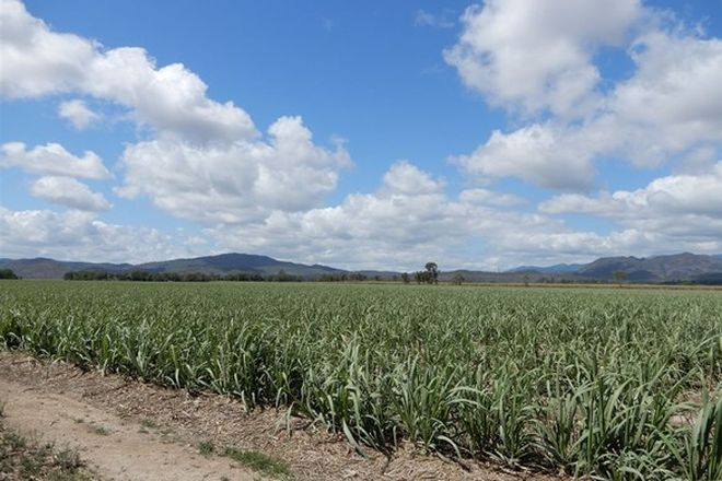 Picture of CALEN QLD 4798