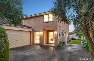 Picture of 26B Medway Street, Box Hill North VIC 3129