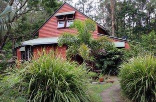 115 Gonpa Road, Collins Creek NSW 2474