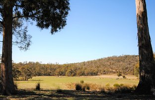 Picture of Lot 1/35 Mosquito Valley Road, Levendale TAS 7120
