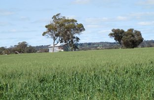 Picture of 29931 Albany Highway, Kendenup WA 6323