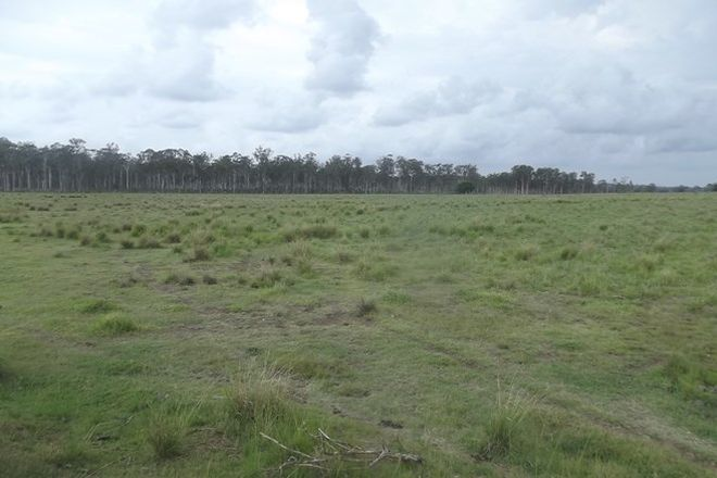 Picture of Lot 8 Mahoneys Road, BUCCA QLD 4670